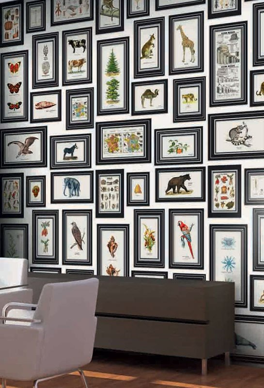 Trompe l'oeil frames surround animal and insect prints on another wallpaper design.